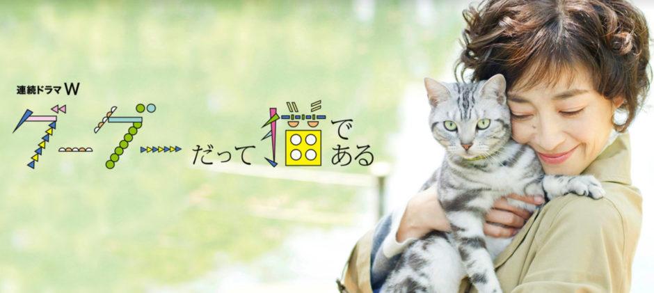 グーグーだって猫であるアイキャッチ画像