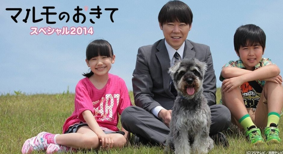 マルモのおきてスペシャル 2014アイキャッチ