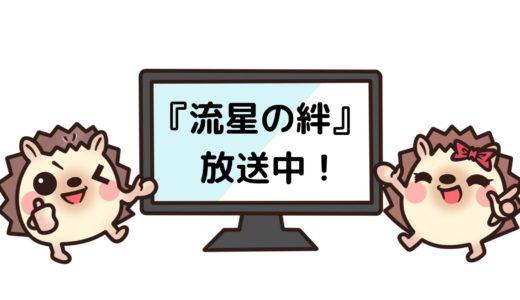 「流星の絆」のドラマを見れる動画配信サイトは?全話無料でお試し視聴する方法!(第1話~10話<最終回>まで)