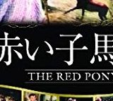 赤い子馬アイキャッチ